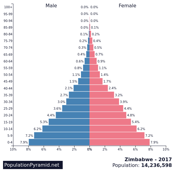 Image result for population pyramid of zimbabwe