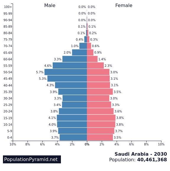 Population of Saudi Arabia 2030 - PopulationPyramid net